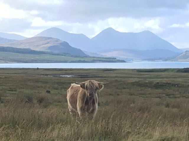 View from Sleat over looking red cuillins