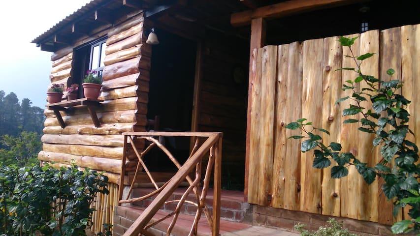 Acogedora cabaña en el bosque. - Juayúa - Cabin