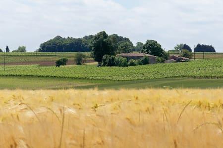 Stone farm house in our vineyard - Ozillac - Haus