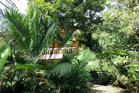 Balcon Flor, Bocas del Toro Island