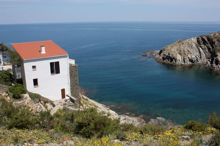 Grande Villa - les pieds dans l'eau - Banyuls-sur-Mer - Villa