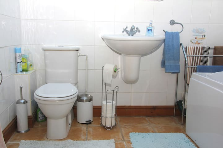 This is the first floor bathroom