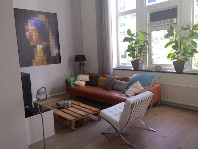 Spaceous appartment in Utrecht city