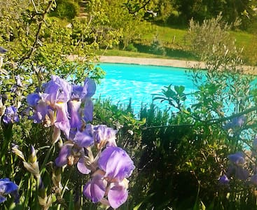 NEW TYPICAL APARTMENT TUSCAN STYLE - Greve In Chianti - Talo