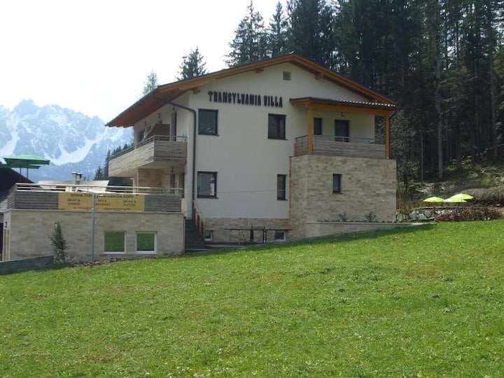 Transylvania Villa & Spa(One Bdr.Apt. Garden View)