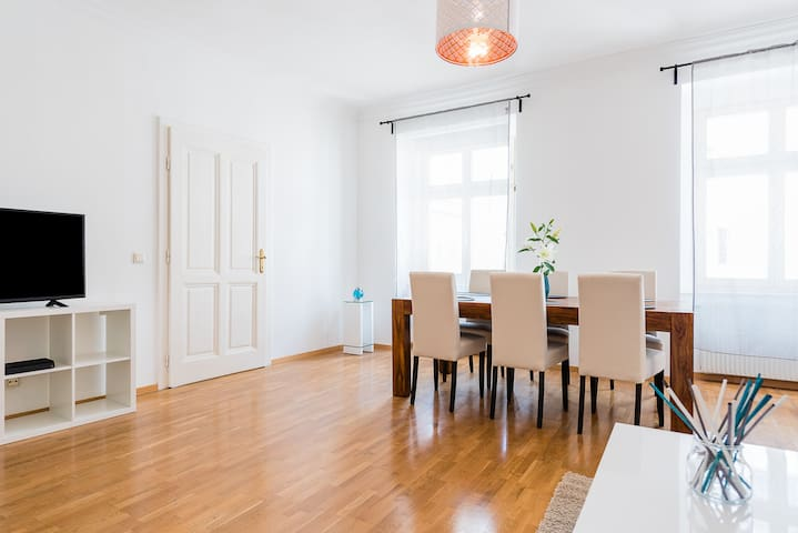 2 Bedroom Apartment in the Center of Vienna