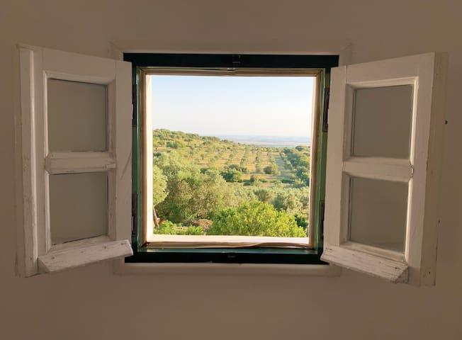 Casa de Campo de Alter, um oasis de tranquilidade
