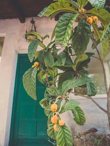 Ampia Villa Immersa nel verde - San Martino delle Scale