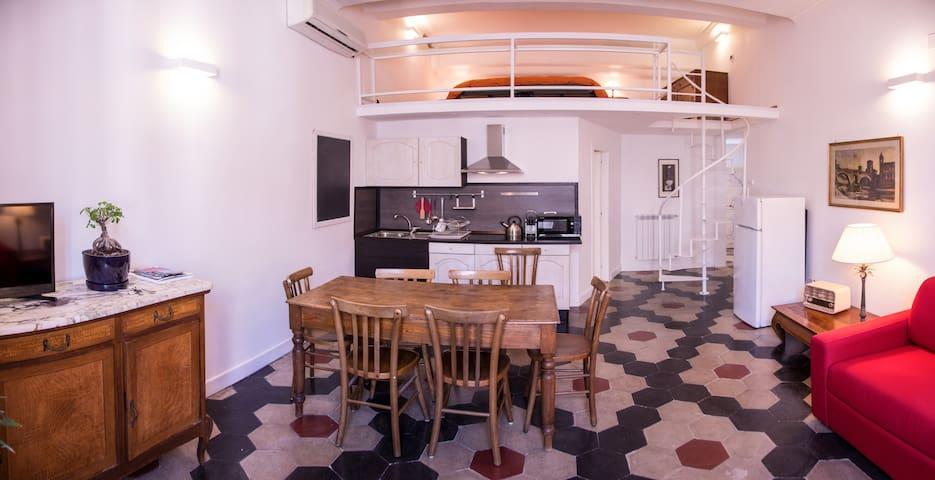 Attico (Penthouse) vicino P.Navona2 - Roma - Apartment