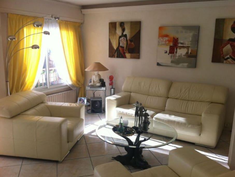 Salon large fauteuils et canapé