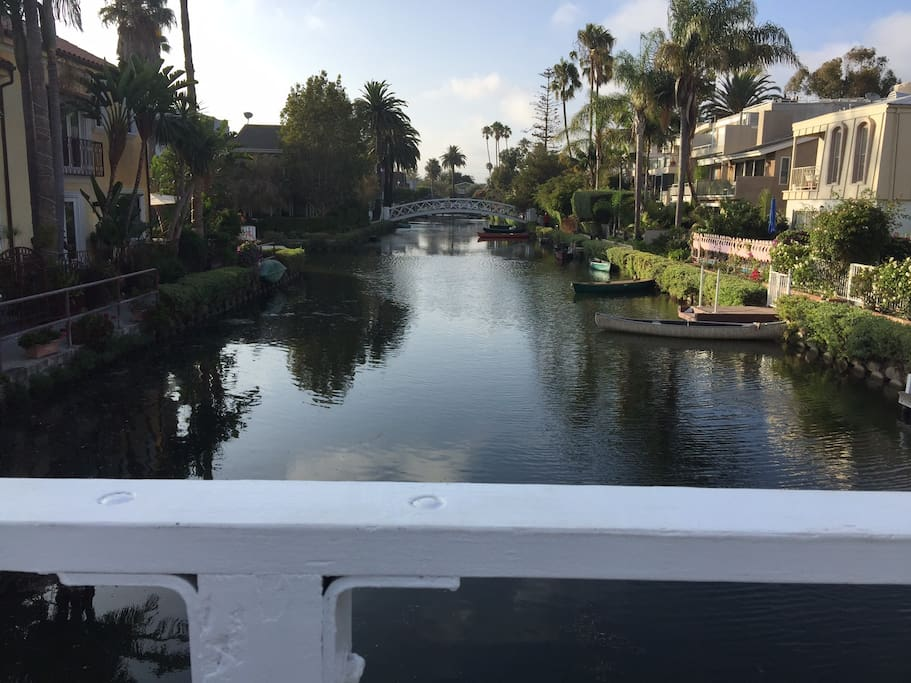 The best part of the venice canals is a few blocks away.  Many beautiful bridges and homes with birds