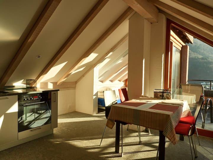 Sonnige Dachwohnung mit grosser Terrasse