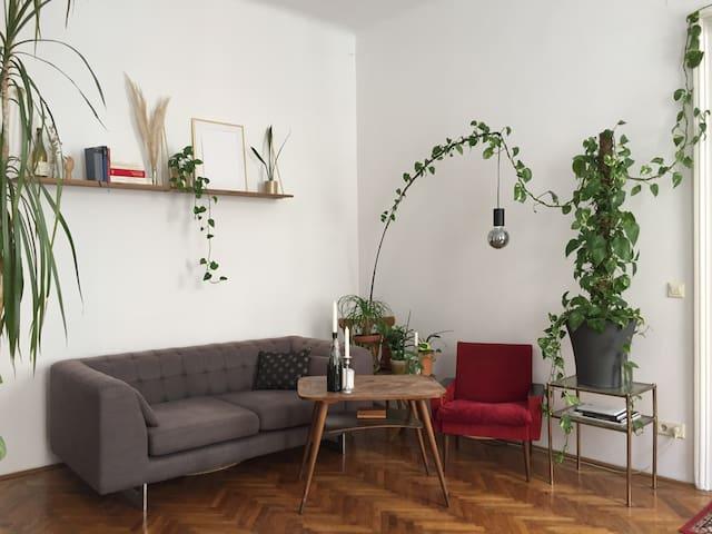 Zwei Zimmer in schöner zentraler Altbauwohnung