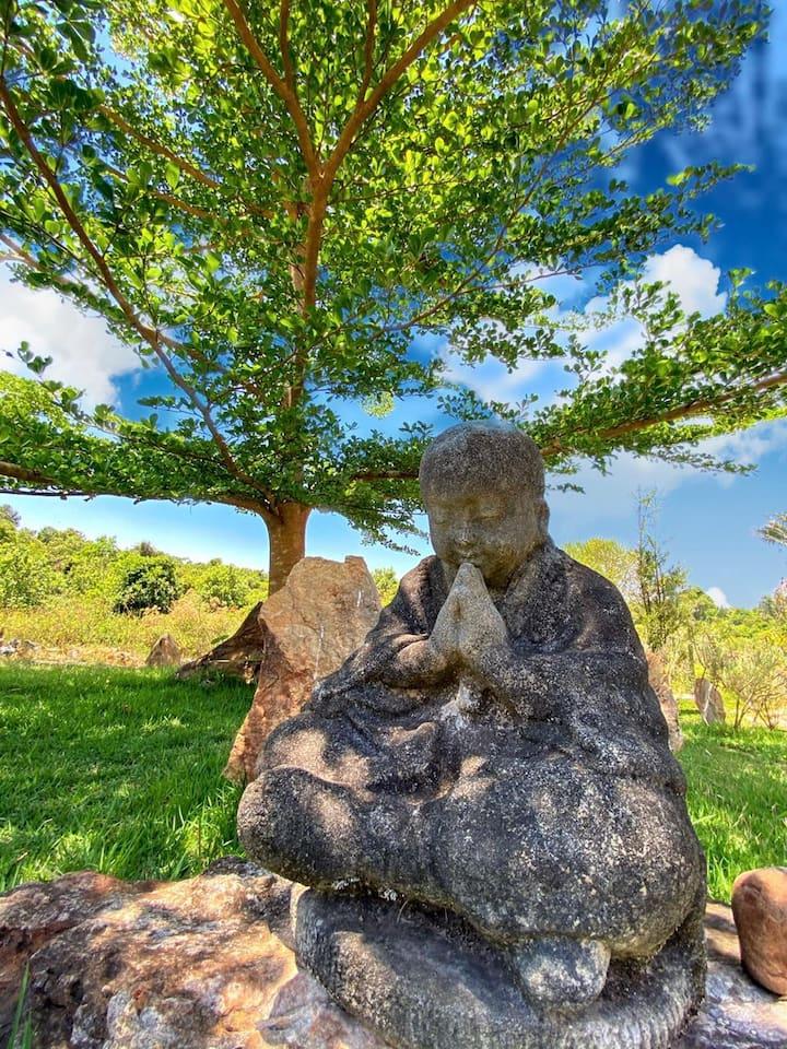 Planeta Verde - natureza e relaxamento em Brasília