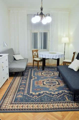 Unique & calm, Prague centre - Žižkov, 2BDR, 54 m2