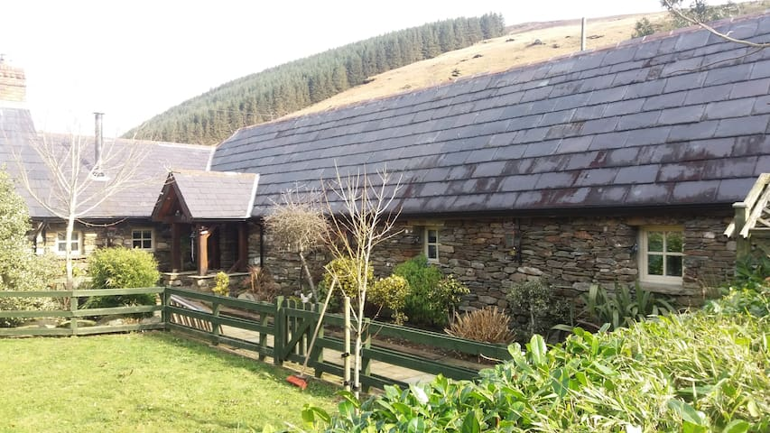 Clarisses Cottage - Glendalough - Bungalow