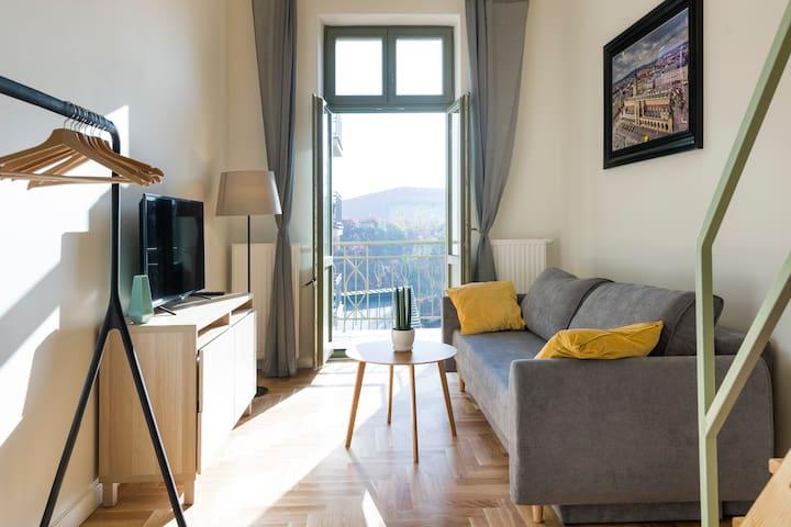 Charming Apartment / Dietla