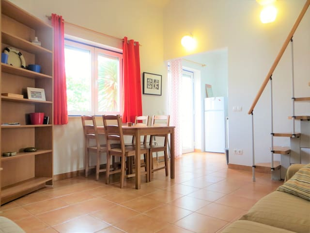 Central apartment 5min from t beach