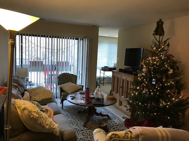 Entire 2 bedroom Apartment - Inside the DC Beltway