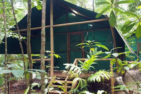 Daintree Crocodylus - Rainforest Bungalows - Cow Bay
