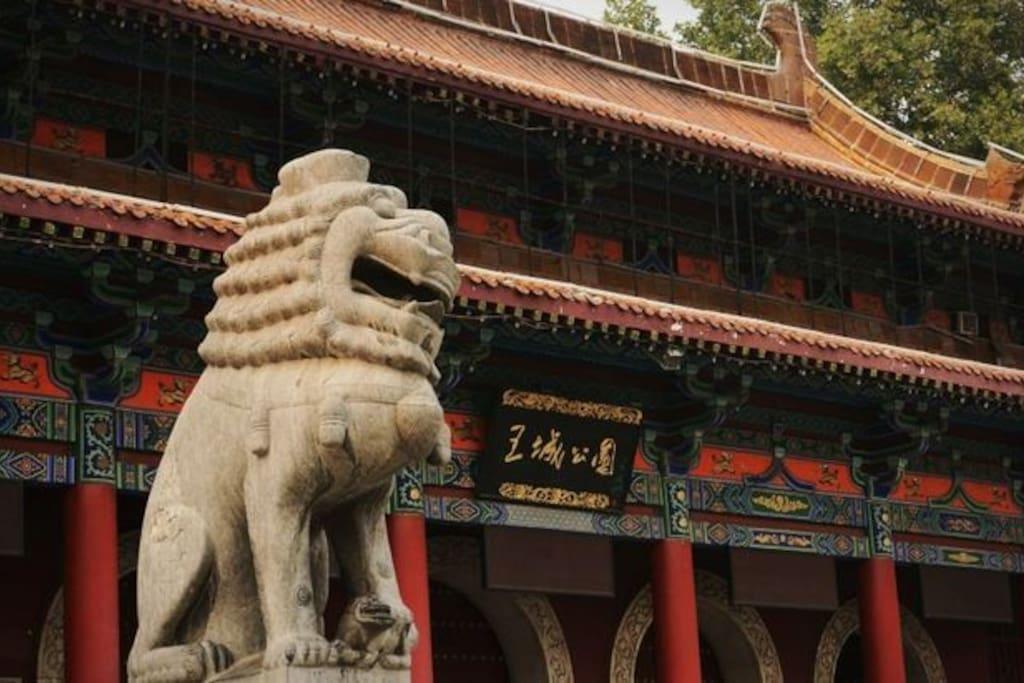 中国洛阳牡丹文化节发源地---王城公园