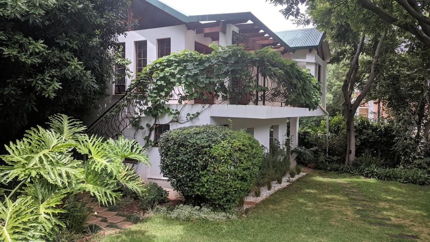 Treetop oasis house in the heart of Melville