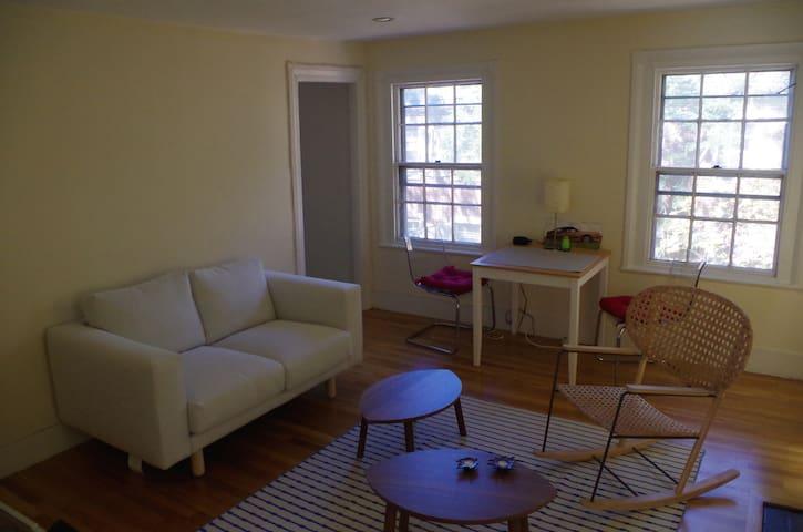 Spacious 1-bed apt in central Boston's Bay Village