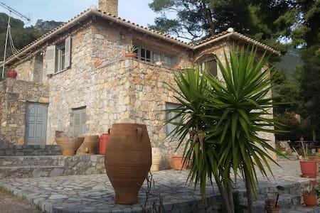 Villa Panos - Porto Germeno - House