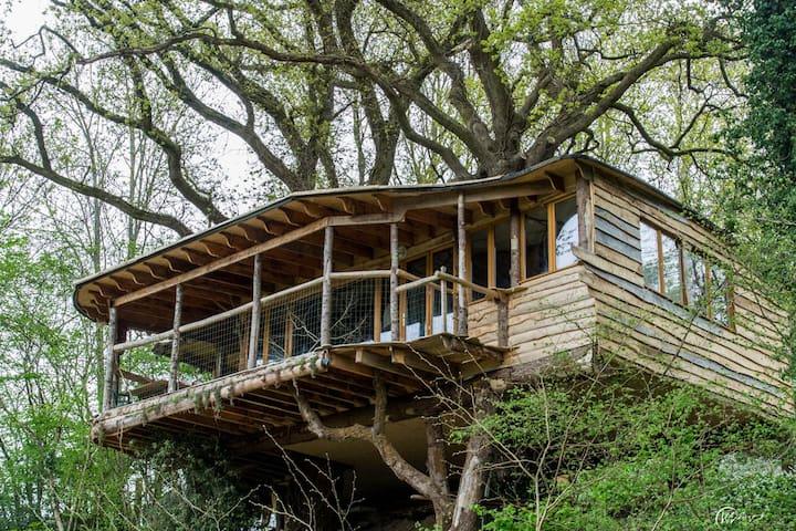 cabane dans les arbres - Saint-Goazec - キャビン