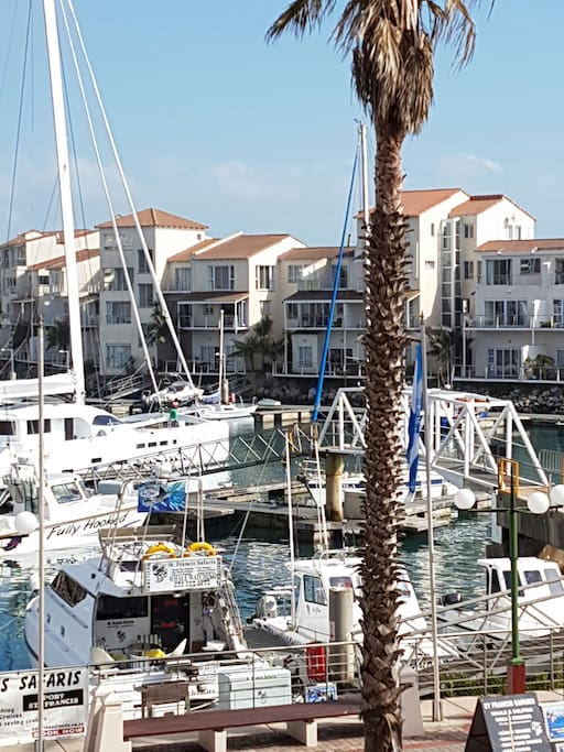 Port view from you balconyPlease  #portstfrancisluxurystudio with any St. Francis bay and surrounding area