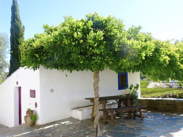 Casa da Padaria - Rio de Moinhos - House