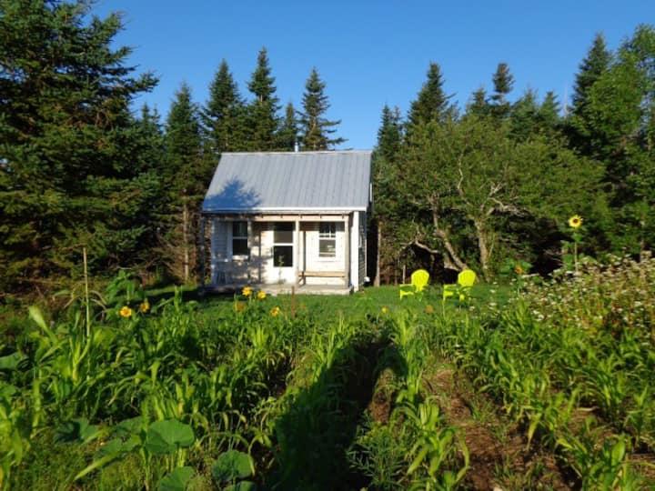 HillTop Farm Cottage