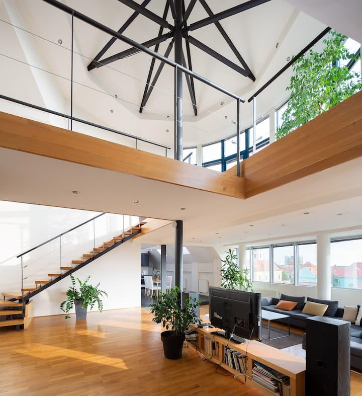 Apartment Penthouse Festina Lente