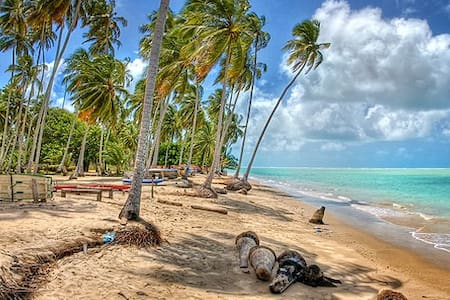 Casa a 500m da Praia de Peroba - Maragogi
