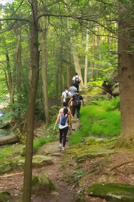 Energy Healing Hike in Harriman State Park