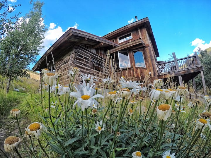 Yellowstone's Sunny Lodge, Experience the Wonders