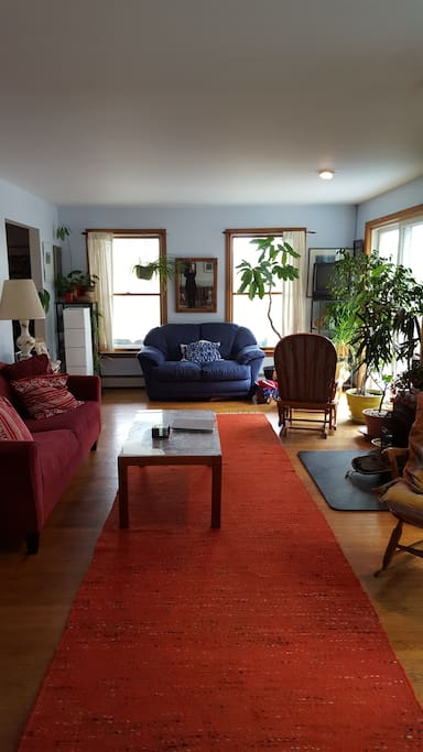 Large sunny living room