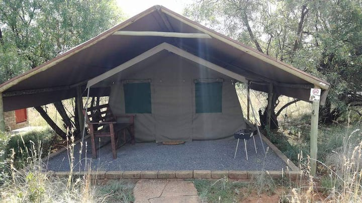 Luxury Tent experience in the bush-veld