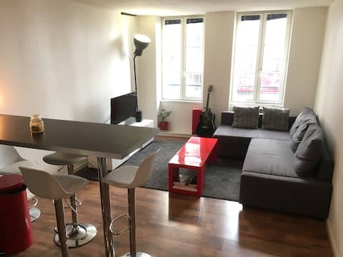 36 m2 appartment + 10m2 terrace in Le Marais !