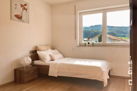 Cozy single room with Mountain View<room 2>