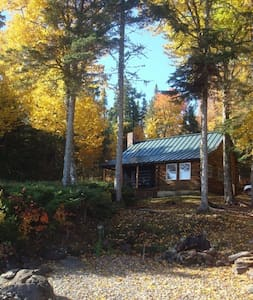 Cozy & Charming Lakefront Log Cabin! - Zomerhuis/Cottage