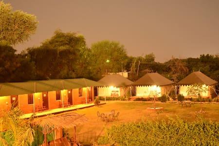 Camping Resort 1