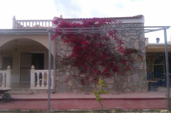 Finca, near ELX/Alicante