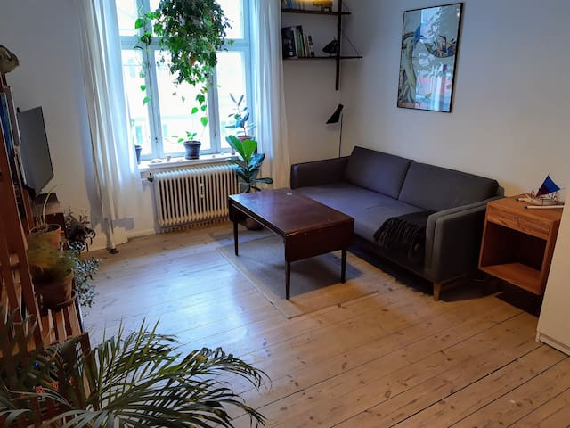 Cozy apartment in hip Vesterbro