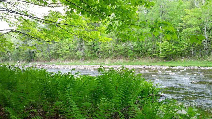 Les pieds dans la rivière. - Lamartine - Chalé