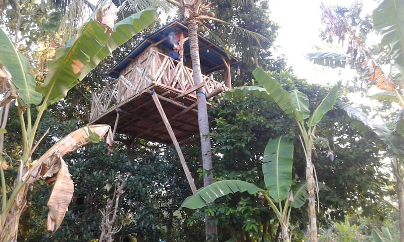 Nyuh Bengkok Tree House - Nusapenida - Bed & Breakfast