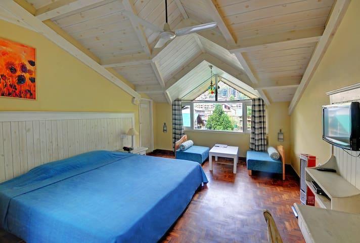 Cozy Attic Double Room