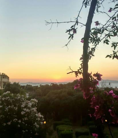 Vista mare al Porto di Punta Ala - Punta Ala - Apartment