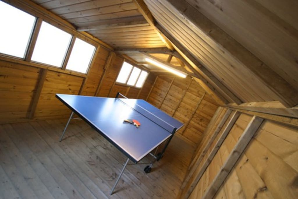 Full size table tennis in outdoor shed