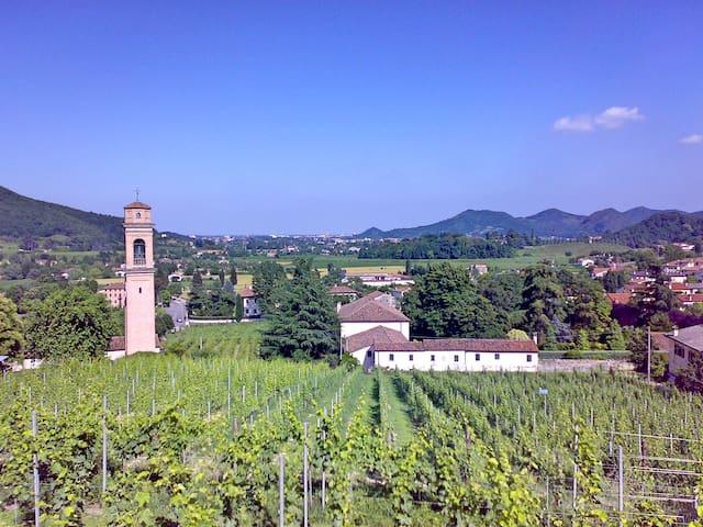 Maison Villa Pollini - Torreglia - Casa